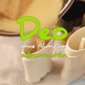 Deo FAQ, Deo selber machen ohne Aluminium