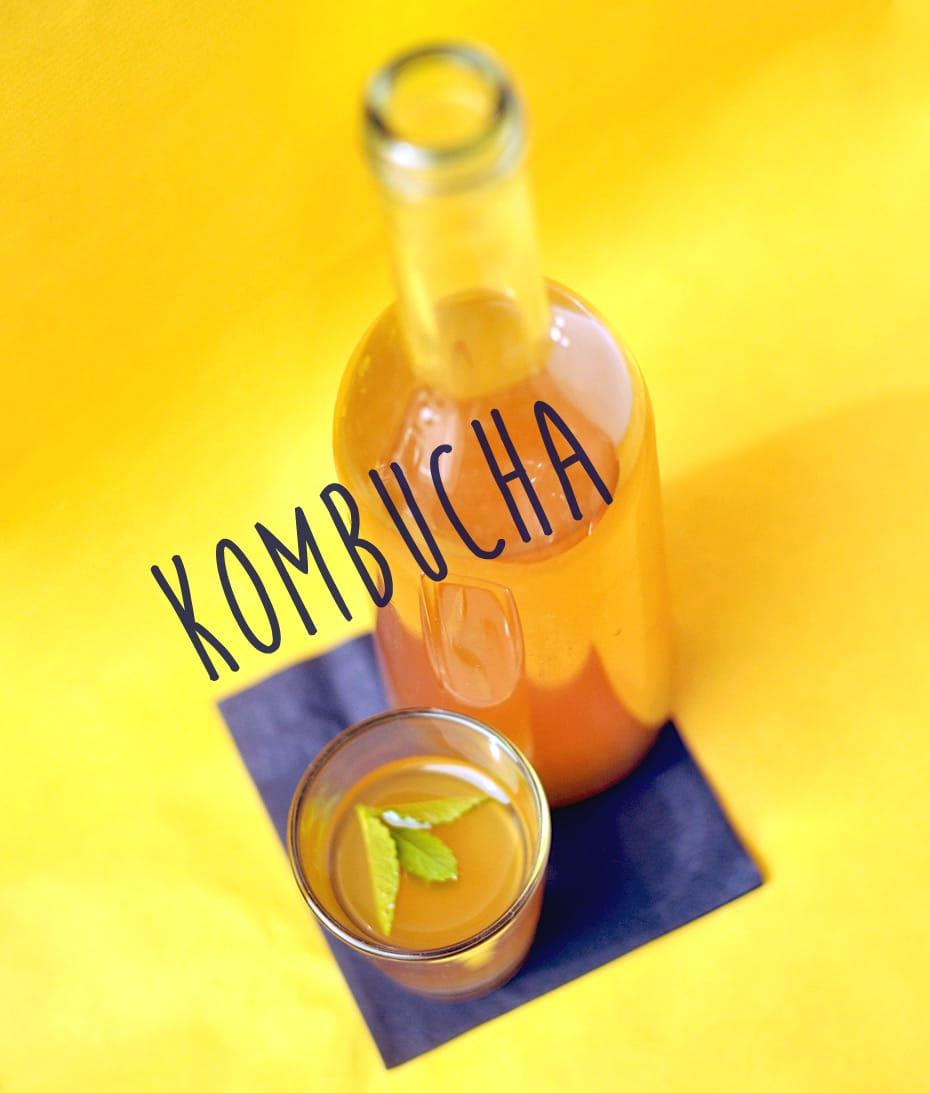 Kombucha selbst herstellen