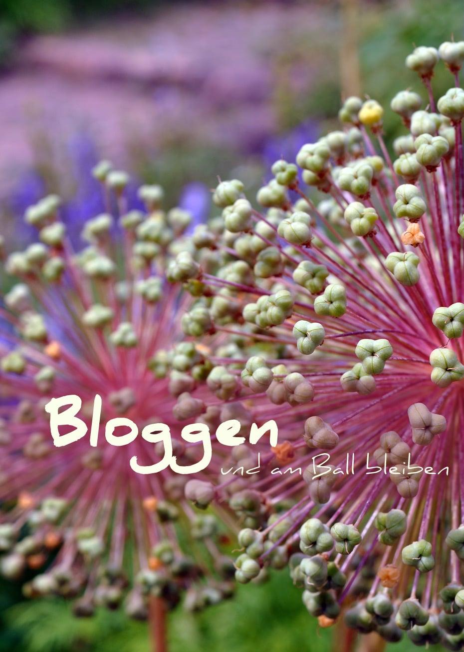 Bloggen um am Ball zu bleiben