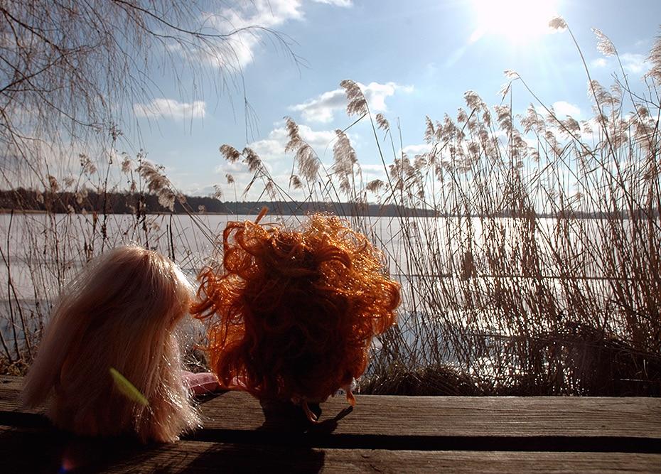 Finding Zen. Meine Ausmisten Challenge   Schwatz Katz