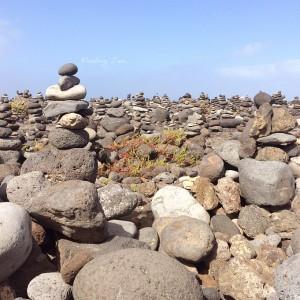Finding Zen. Wohin mit allem | Schwatz Katz
