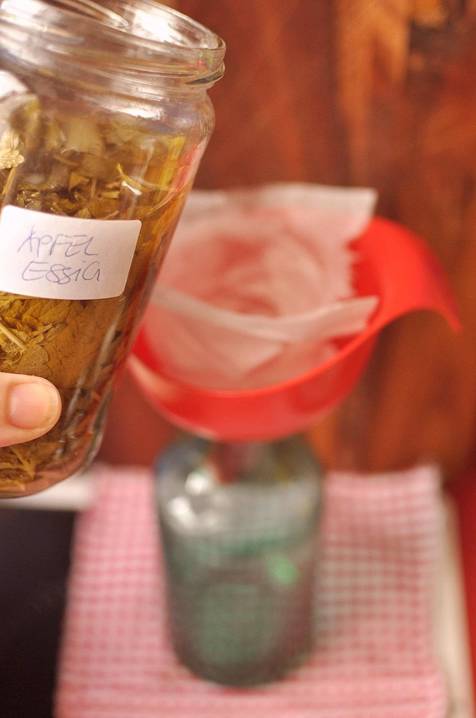 Saure Rinse mit Zitronenmelisse gegen sprödes Sommerhaar | Schwatz Katz