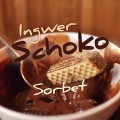 Vegan Ingwer Schokoladen Sorbet | Schwatz Katz