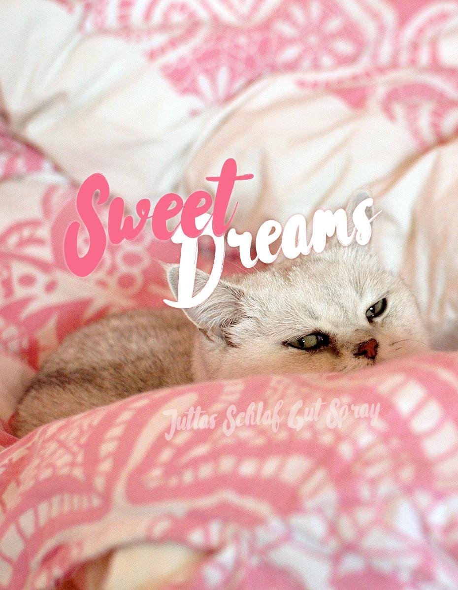 Sweet Dreams – Juttas Schlaf Gut Spray | Schwatz Katz
