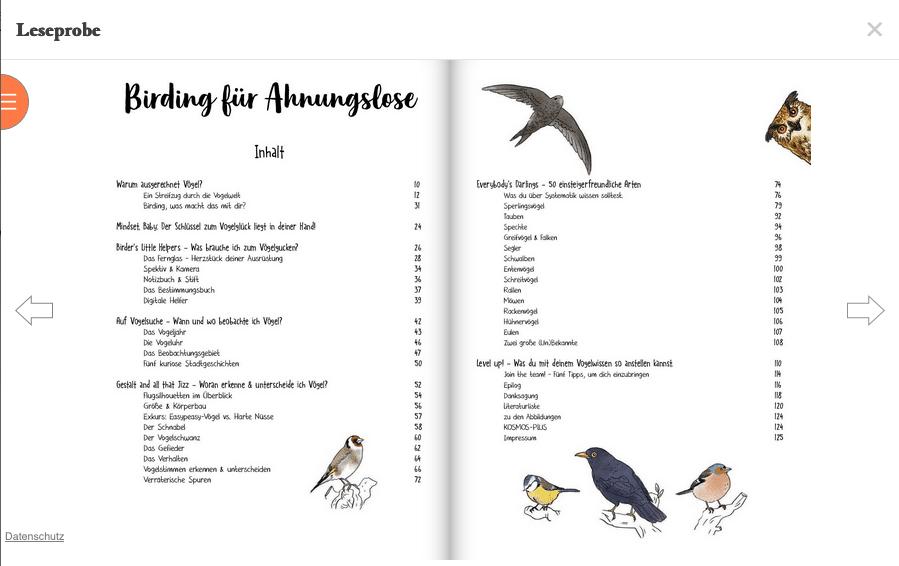 Birding für Ahnungslose, Graphic Novel von Vero Mischitz
