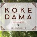 Kokedama-inspirierte Pflanzbälle