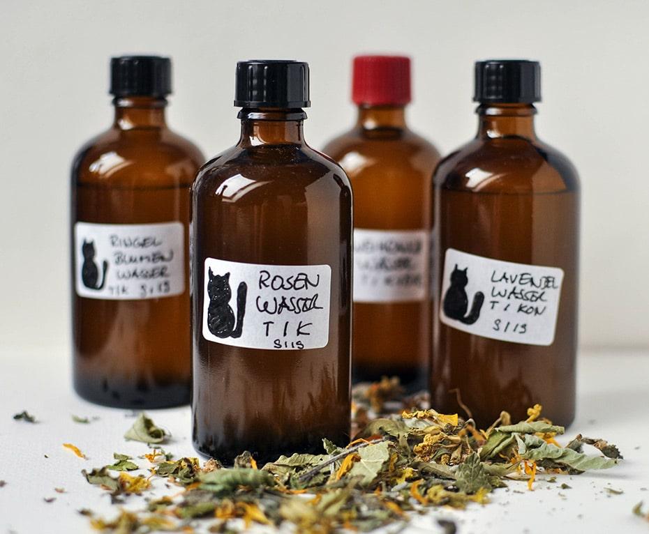 Hydrolat selbermachen ohne Destille | Schwatz Katz