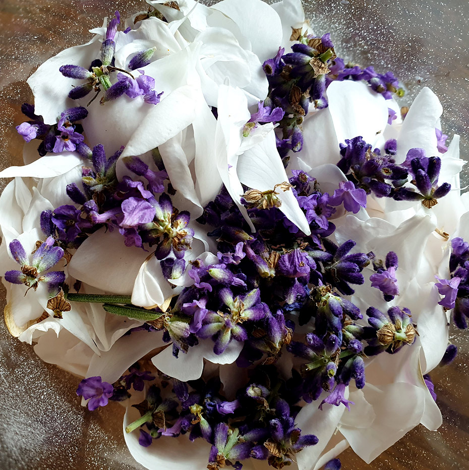 Urlaubsfeeling Peeling Rose-Lavendel | Schwatz Katz