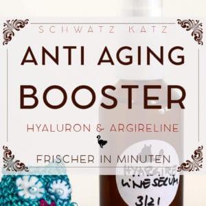 Hyaluron-Argireline Anti-Aging Booster mit Aloe Vera | Schwatz Katz