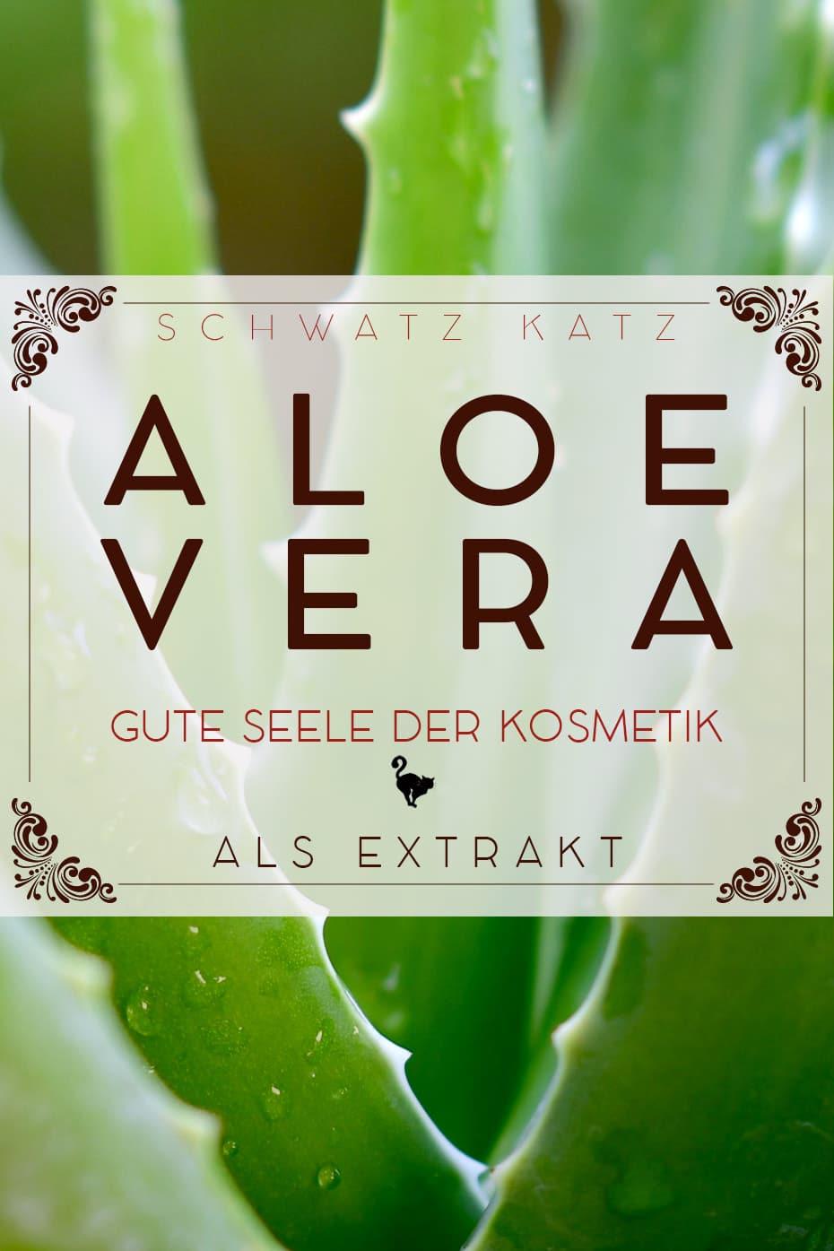 Aloe Vera | Schwatz Katz Mini Rohstoffportrait