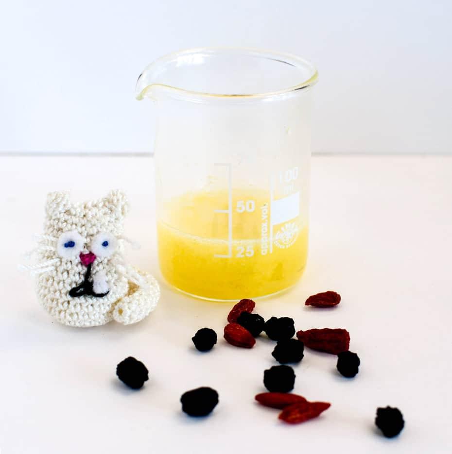 Vitamin C Anti Age Fluid zum Selbermachen   Schwatz Katz
