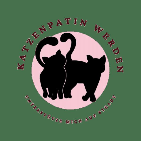 Unterstütze Schwatz Katz! Werde Katzenpatin auf Steady.
